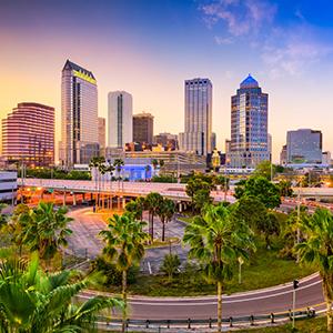 Virtual Alumni Mixer: Tampa, FL-April 1, 2021 Thumbnail Image